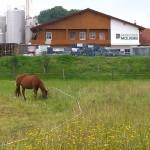 Hier kommen die leckeren Bio-Milchprodukte her: Die Andechser Molkerei